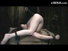 Girl With Piercings In Her Pussy Legs Up Mouth Gag Ti...